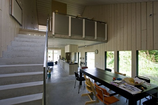 casa monofamiliare: chimney house